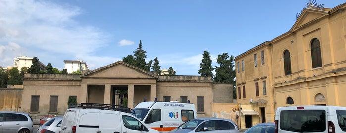 Cimitero Cappuccini is one of Palermo.