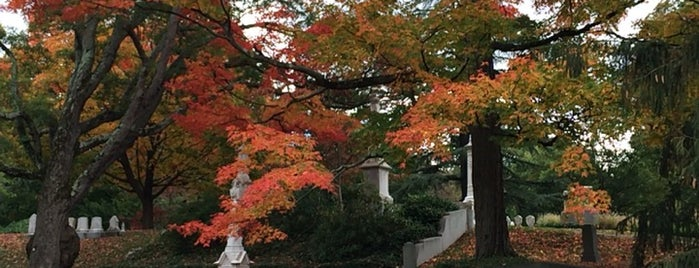 Mount Auburn Cemetery is one of Enricoさんのお気に入りスポット.