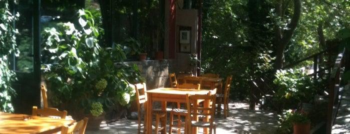 taverna afroditi is one of Kreta - Greece.