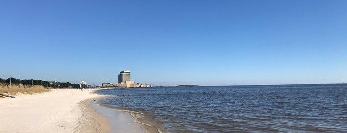 Gulf Coast Beach is one of Posti che sono piaciuti a Bryan.
