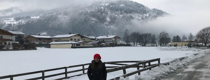 Zillertal is one of Zillertal Arena.