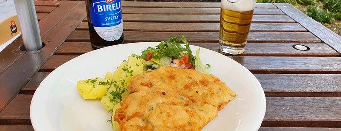Pod Lipami is one of Nekuřácké hospody a restaurace.