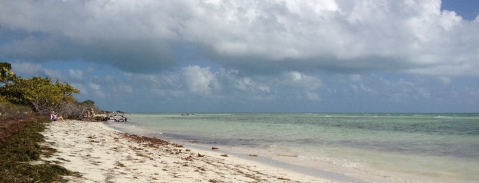 Sandspur Beach is one of USA Key West.
