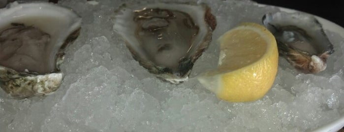 Shuck Oyster Bar is one of Seafood Restaurants.
