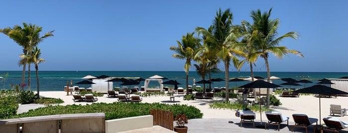 Punta Bonita Beach Club is one of Tempat yang Disukai Leo.