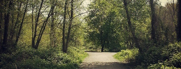 Everett Crowley Park is one of Victoria-star's Saved Places.