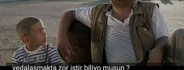 Arabacı iletişim Turkcell is one of Serkan : понравившиеся места.