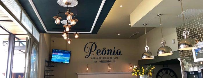 Peônia is one of สถานที่ที่ Fernando ถูกใจ.