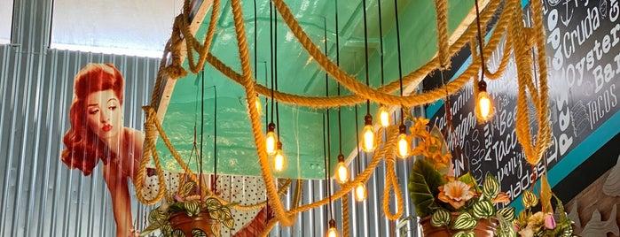 El Cachanilla Oyster Bar & Grill is one of Querétaro.