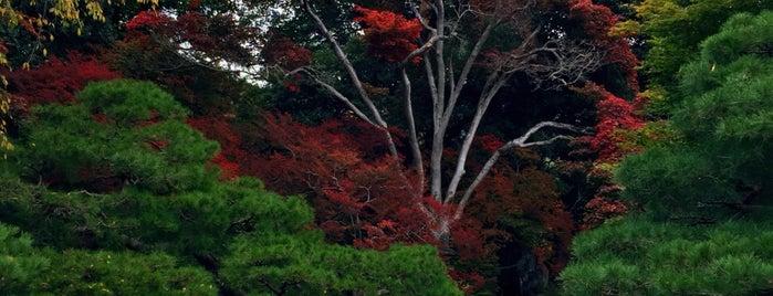 田中本家博物館 is one of Hisayoshi 님이 좋아한 장소.