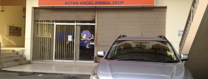 Asyan Angel Animal Shop is one of Orte, die S gefallen.
