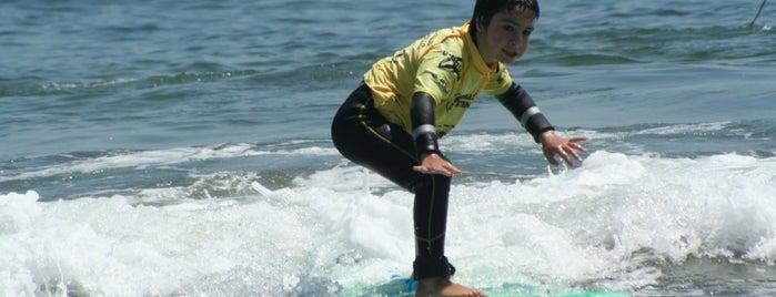 Escuela de Surf Maitencillo is one of Locais curtidos por Victoria &.