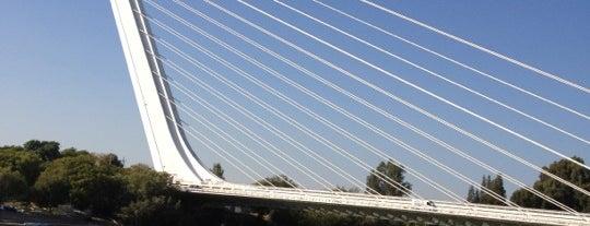 Puente del Alamillo is one of #2019/2020 Sevilla Andalucia.