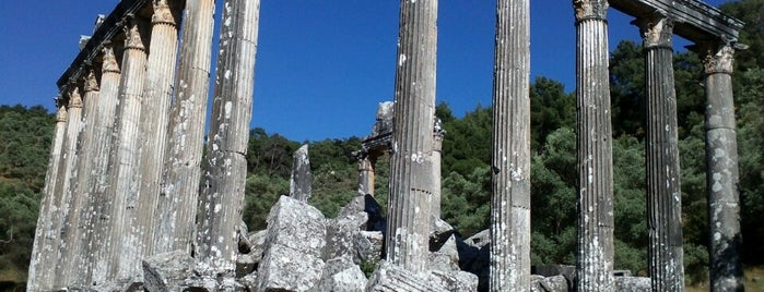Euromos is one of ANCIENT LOCATIONS IN TURKEY.