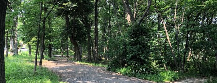黒川清流公園 is one of モリチャン : понравившиеся места.