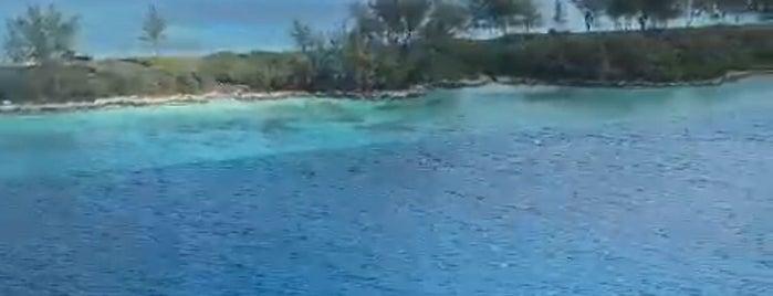 Nassau is one of Mayte'nin Beğendiği Mekanlar.