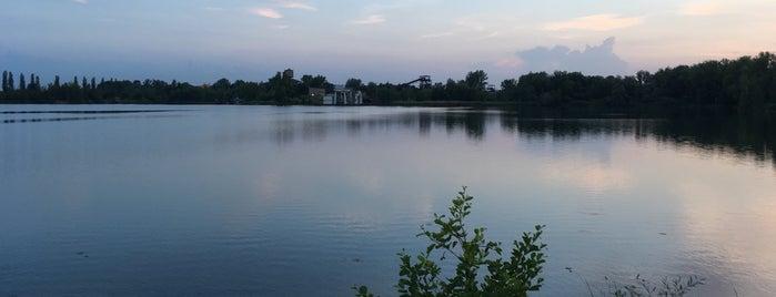 Velké Kališovo jezero is one of สถานที่ที่ Vladimír ถูกใจ.