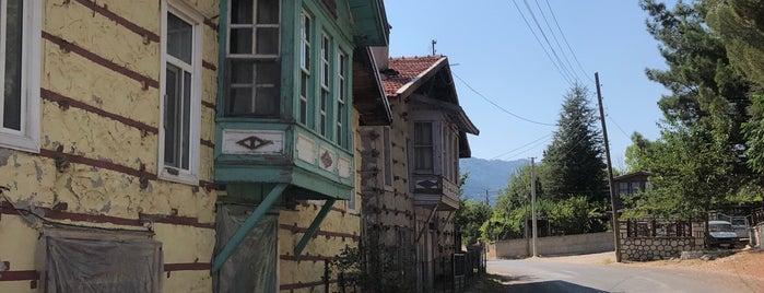 Ormana is one of Bir Gezginin Seyir Defteri.