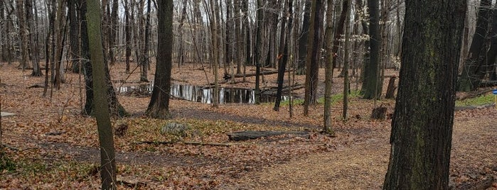 Oak Leaf Trail is one of Karl'ın Beğendiği Mekanlar.