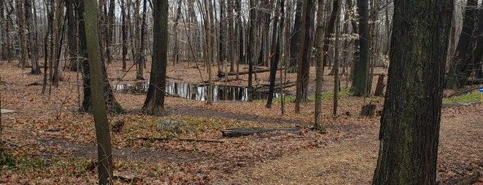 Oak Leaf Trail is one of Karl : понравившиеся места.