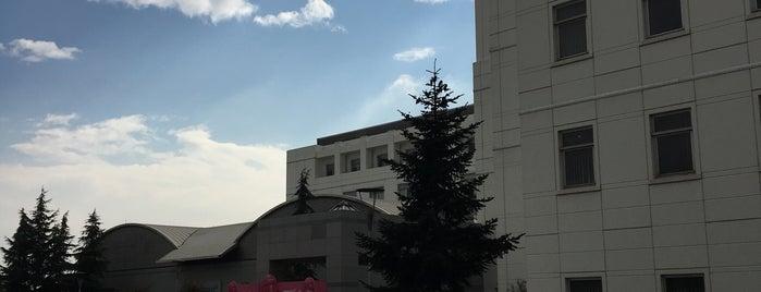 Anadolu Sağlık Merkezi is one of Lieux qui ont plu à Mustafa.