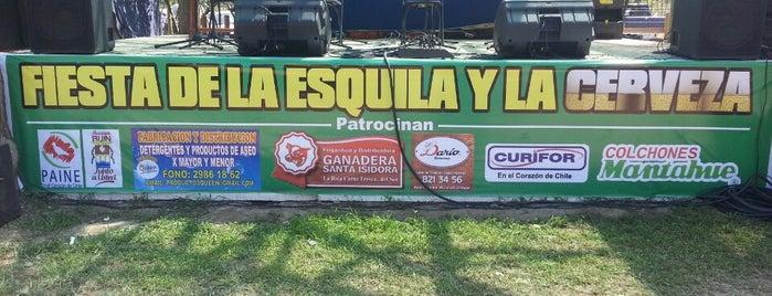 Aguila Sur is one of สถานที่ที่บันทึกไว้ของ Gabriel.