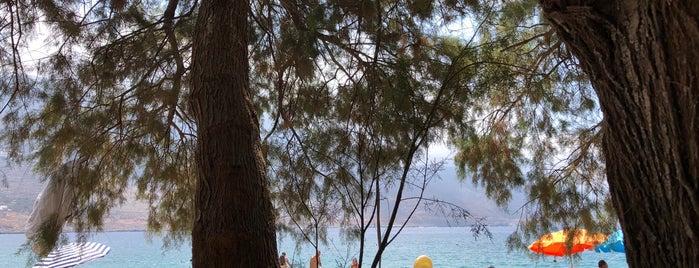 Levrossos Beach is one of Locais curtidos por Menia.
