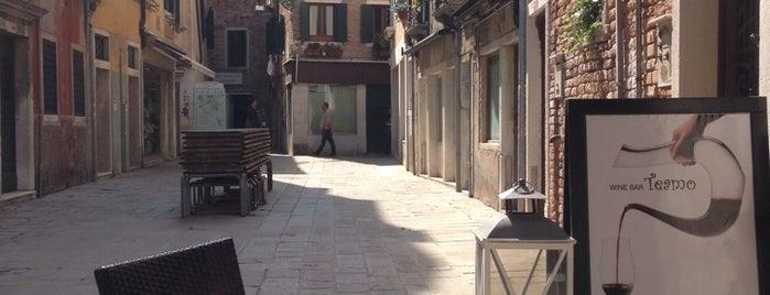 Teamo is one of Venezia.