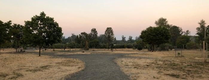Alton Baker Dog Park is one of สถานที่ที่ Cale ถูกใจ.