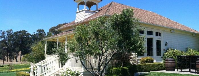 Baileyana Tangent Winery is one of Paso vineyards.