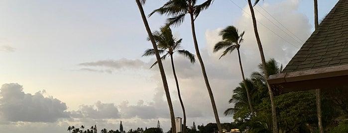Waimea Beach Park is one of Hawaii.