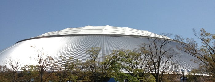 MetLife Dome is one of Lugares guardados de PenSieve.