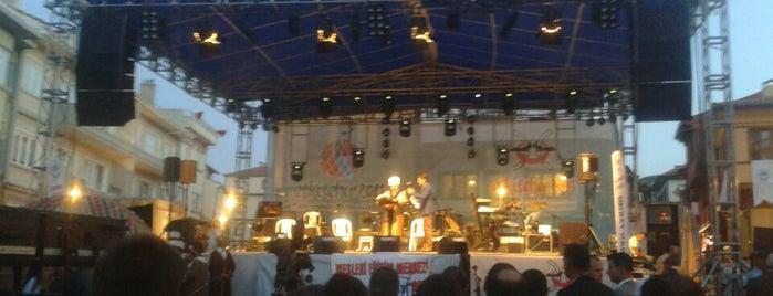 Odunpazarı Meydanı is one of Locais curtidos por MEHMET YUSUF.