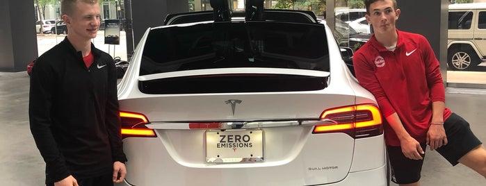 Tesla Gold Coast is one of Joe : понравившиеся места.