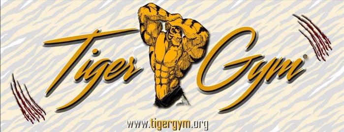 Tiger GYM is one of Lugares favoritos de 🅱️ülen₺.