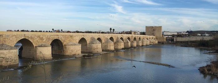 Puente Romano is one of Que visitar en Cordoba.