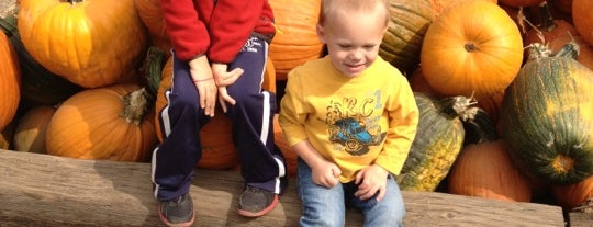 Vala's Pumpkin Patch & Apple Orchard is one of Best of Omaha.
