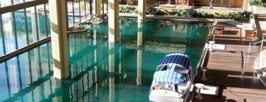 JW Marriott Desert Springs Resort & Spa is one of Favorite Marriott Hotels.