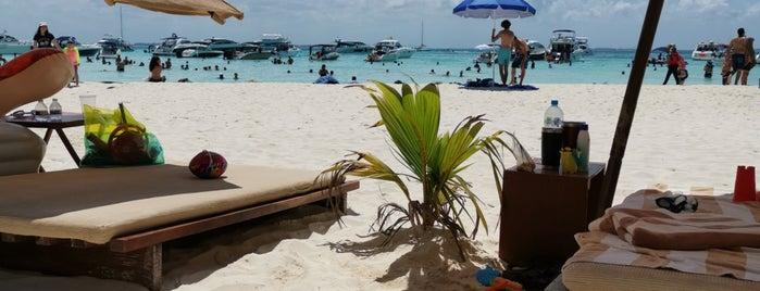 OceansVS is one of Orte, die Emiliano gefallen.