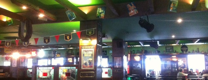 Shamrock Irish Pub is one of Dresden.