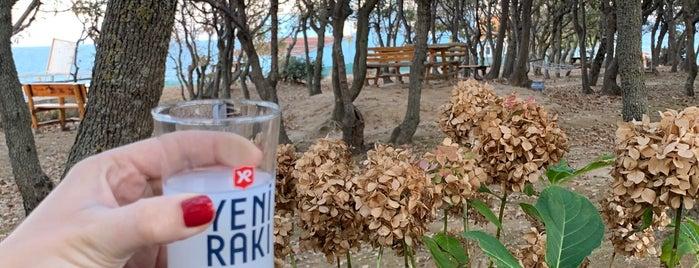 Koru Restaurant Yalıköy is one of Mekans.