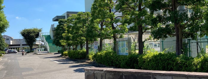 埼玉県立 志木高等学校 is one of 東上線方面.