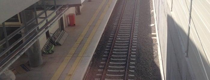 Marmaray Güzelyalı İstasyonu is one of Tren İstasyonları - Pendik.