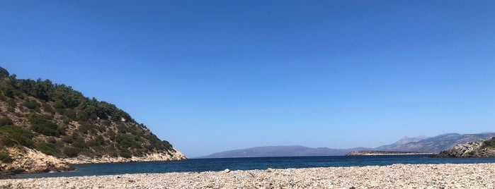 Didyma Beach is one of Chios.