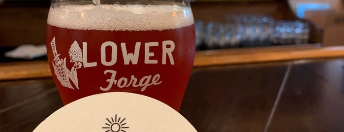 Lower Forge Brewery & Distillery is one of New Jersey Breweries.