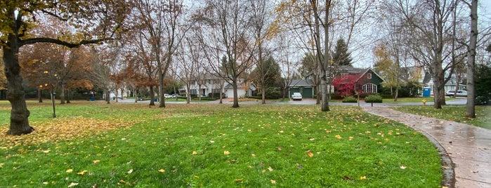 seminary oaks park is one of Orte, die Douglas gefallen.