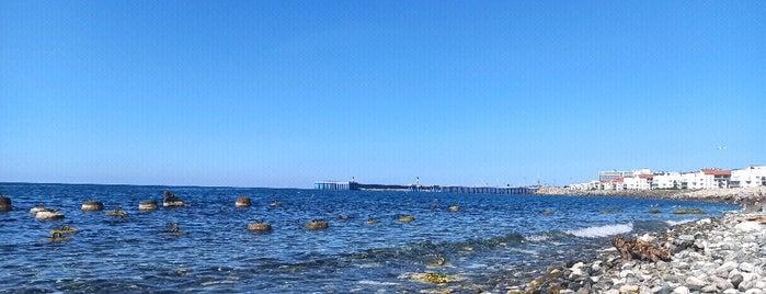 "Пляж ""Имеретинский"" is one of Stanislavさんのお気に入りスポット."