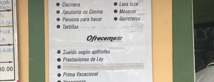 Restaurante La Lupita is one of Para comer cerca de ishop.