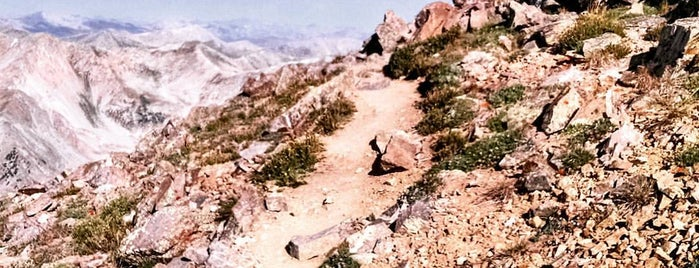 Missouri Mountain is one of 14ers.