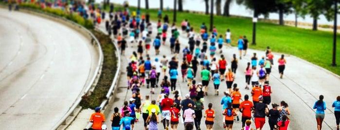 Chicago Half Marathon is one of running.